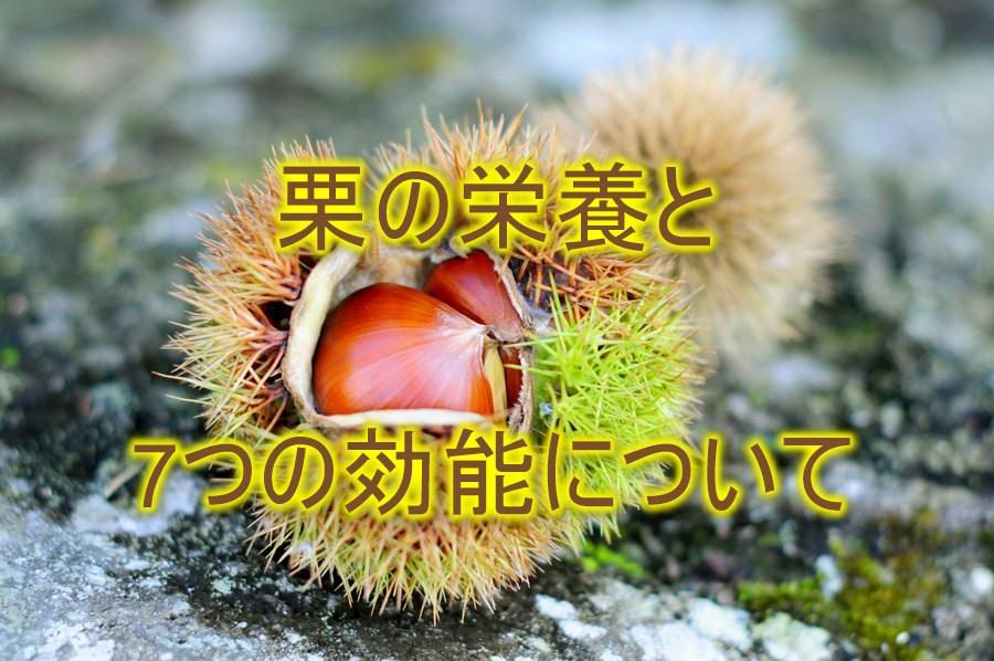ofuro-do_food-0008-1