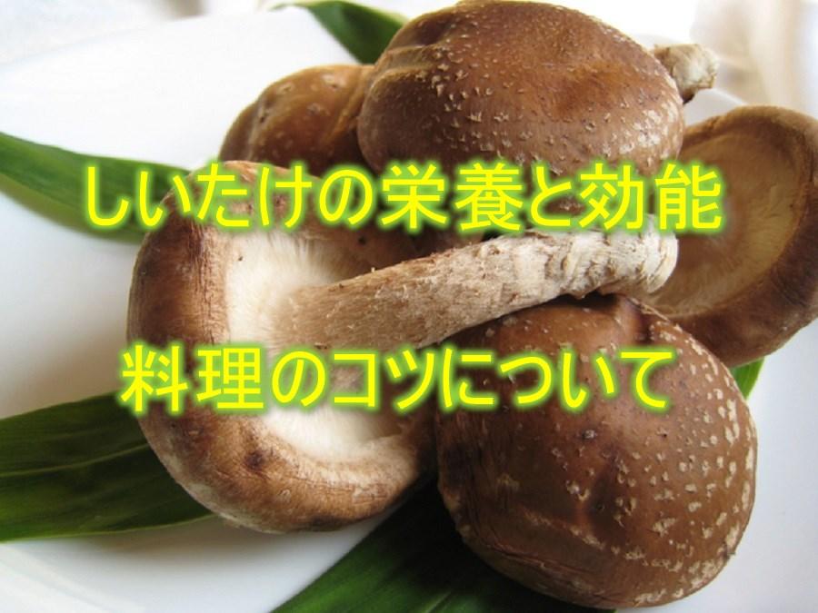ofuro-do_food-0016-1