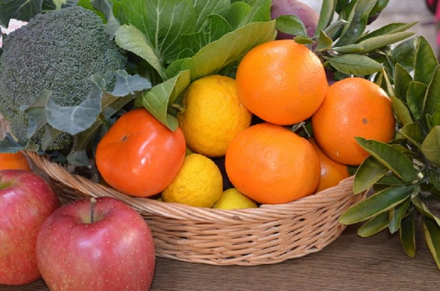 秋の食材 効能記事まとめ【随時追加】
