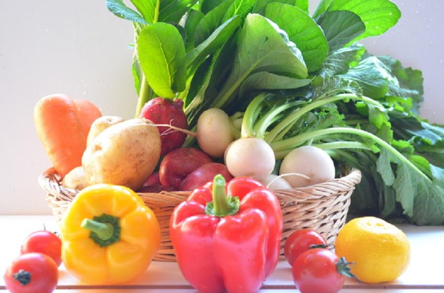 亜鉛の多い野菜ランキングTOP10