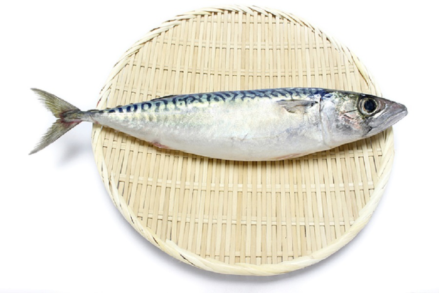 ビタミンB2の多い魚ランキングTOP10