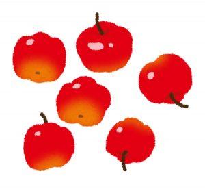 アセロラの果実のイラスト