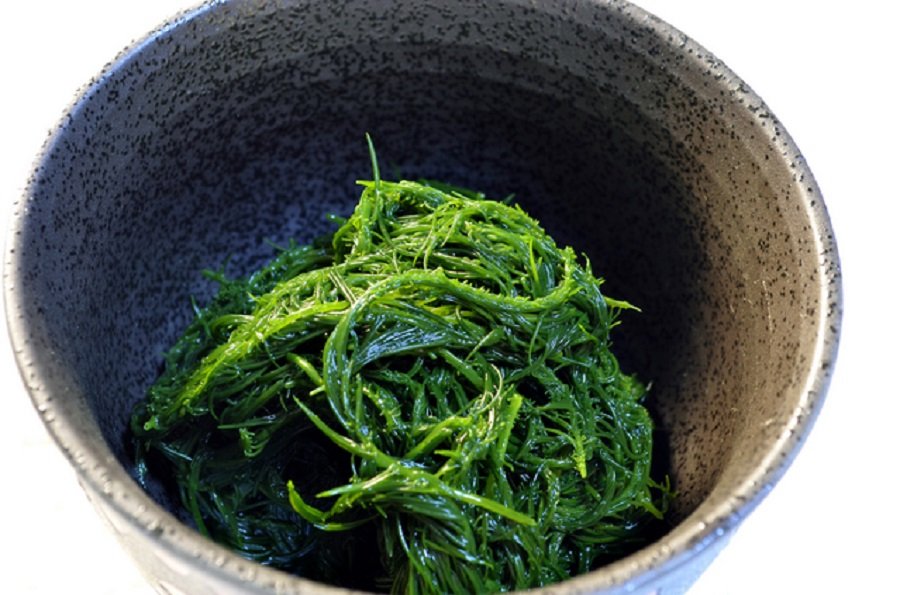 マグネシウムの多い海藻ランキング