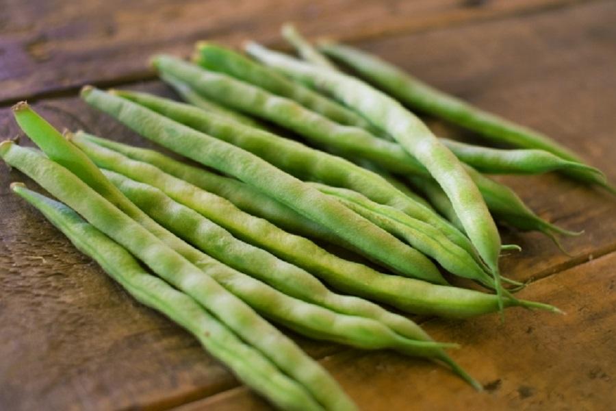 いんげん豆の栄養と効能