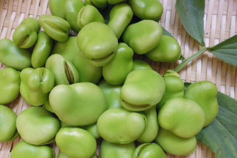 そら豆の効果を高める食べ物・食べ合わせ