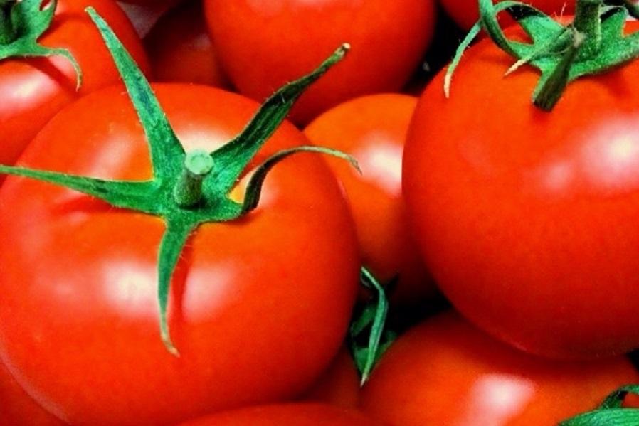 トマトのアンチエイジング効果のヒミツ&おすすめ簡単レシピ