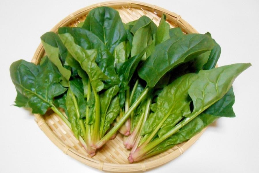 ほうれん草のピリピリ、ギシギシの原因は?防ぐ方法や調理法は?